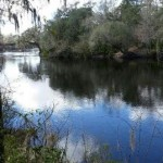 LIFE ON THE SUWANNEE RIVER